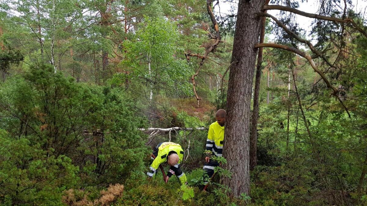 Brannmannskaper jobber mandag kveld på flere brannsteder etter lynnedslag. Her fra Froland.