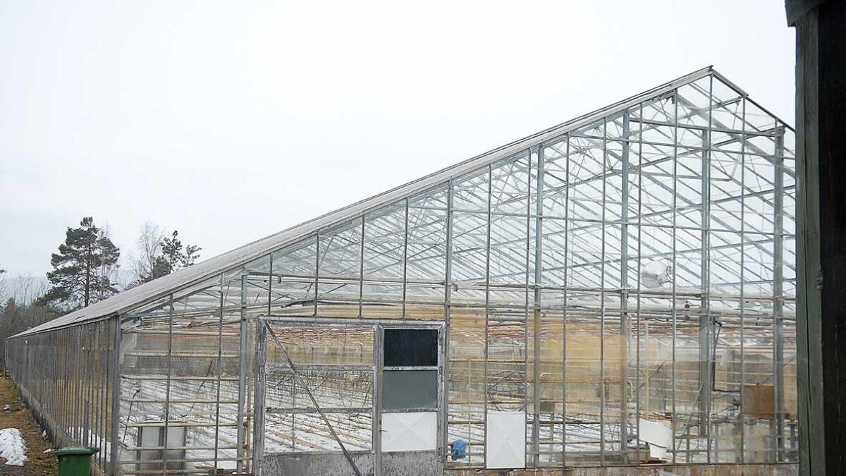 Bjorå gartneri på Evje blir lagt ut for sal i desse dagar. Prisantydning er snautt 5 mill. kr.