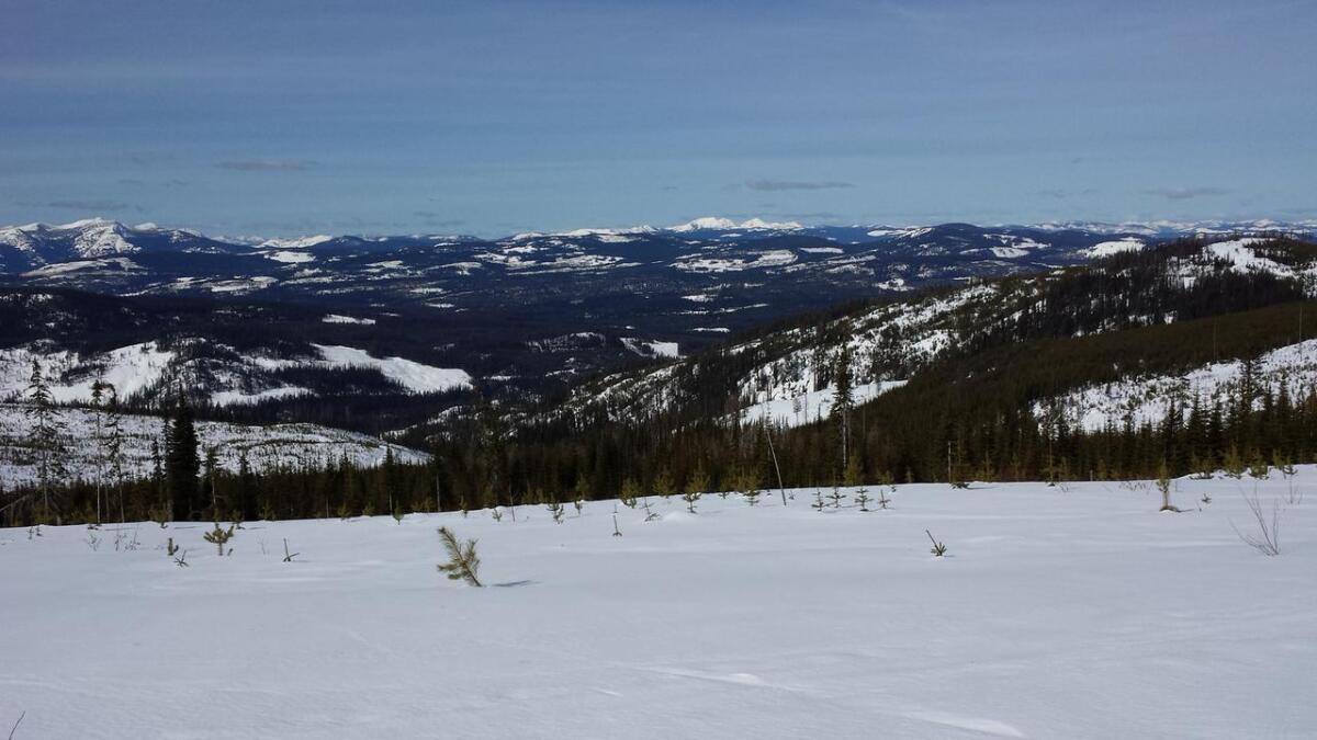 Fjellet er på ca. 2000 meter og er en del av et større rekreasjonsområde i Kootenay-fjellene.