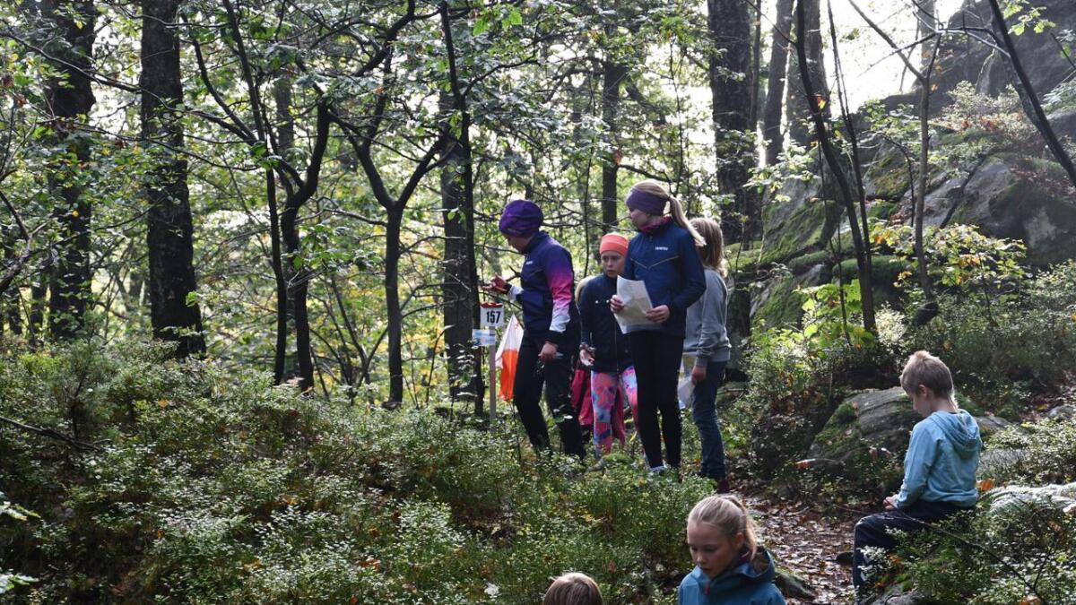 Løypa var omringet av fin natur og tok elevene inn i skogen i området rundt Springvannsstemmen.