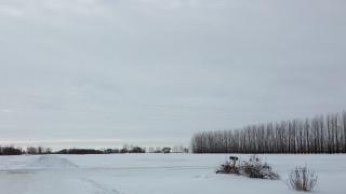 Til tross for de kalde vinterdagene er det ikke så mye snø i Nord Dakota.
