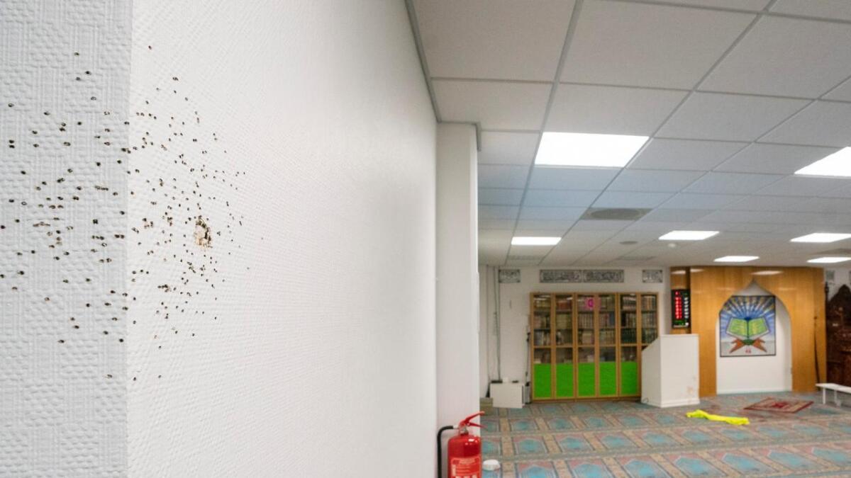 Bilder viser blodflekker og kulehull etter skyting og basketaket da Phillip Manshaus tok seg inn i moskéen Al-Noor Islamic Centre på Skui i Bærum.