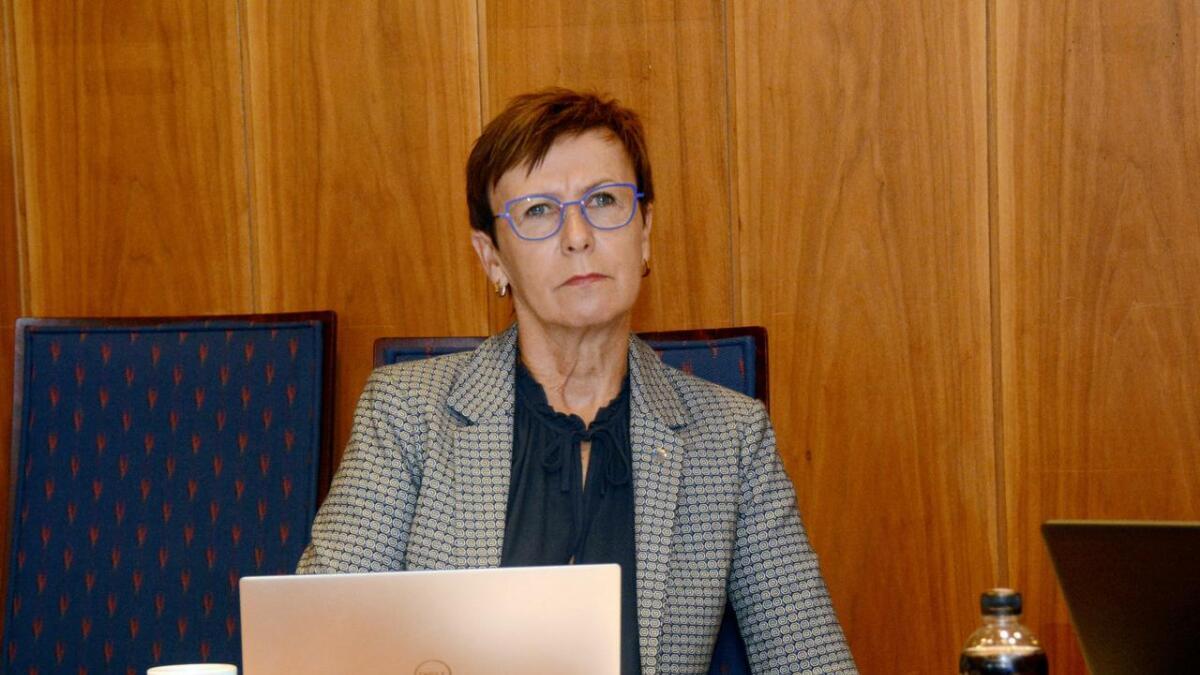 Rådmann Tone Marie Nybø Solheim sa at den estetiske veilederen ikke har vært mye brukt til nå, men at den vil bli brukt fremover.