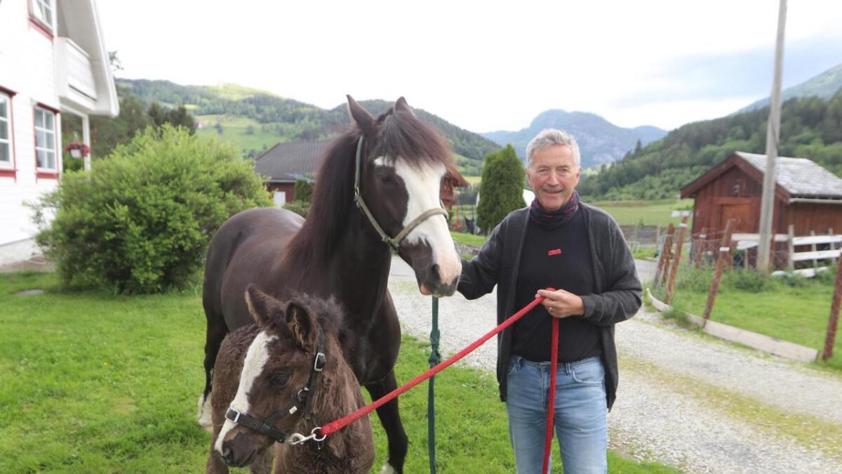 Jostein Finne har halde på med hest heile livet. Han har hatt mange hestar opp gjennom tida. I dag har han mellom anna kaldblodstravaren Bjørketora og følet Vossa Luna heime på garden på Bjørke.