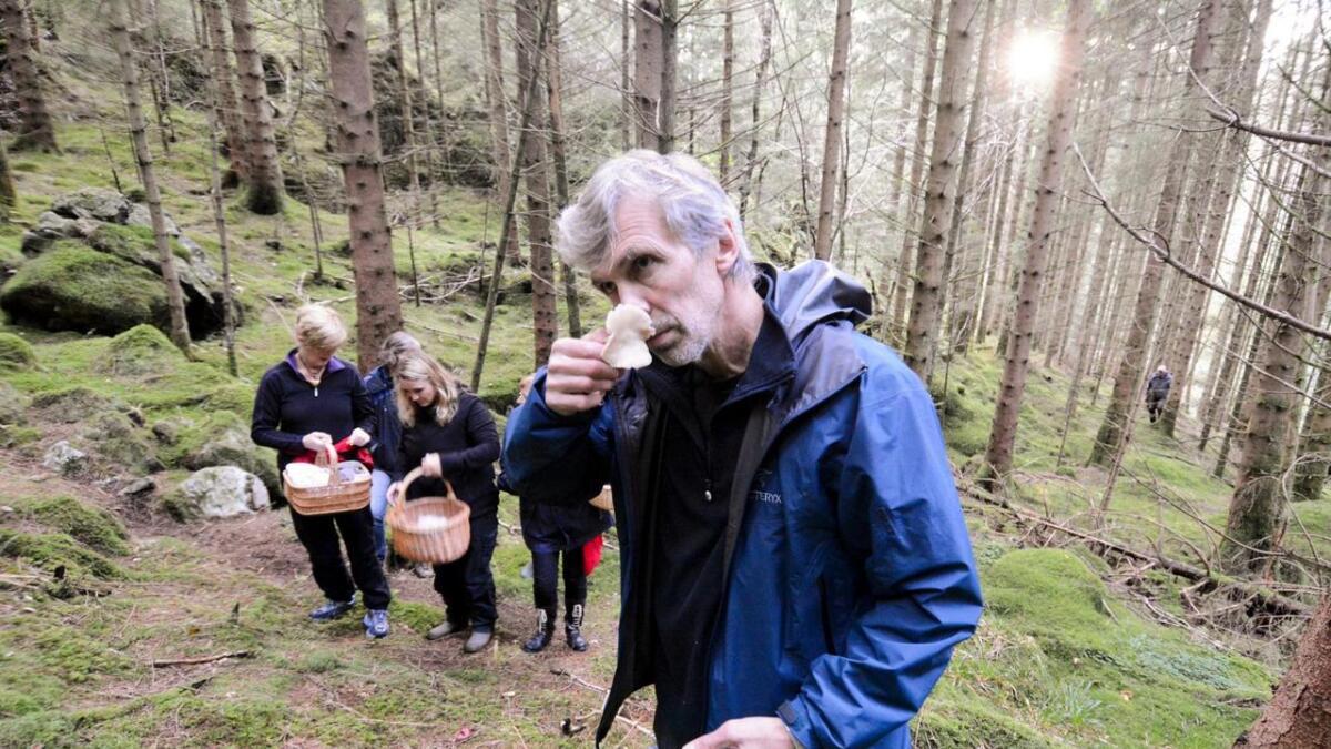Neste veke for Per Fadnes besøk av folk frå heile Europa, som skal undersøkja nyttevekstar i naturen i Sunnhordland.