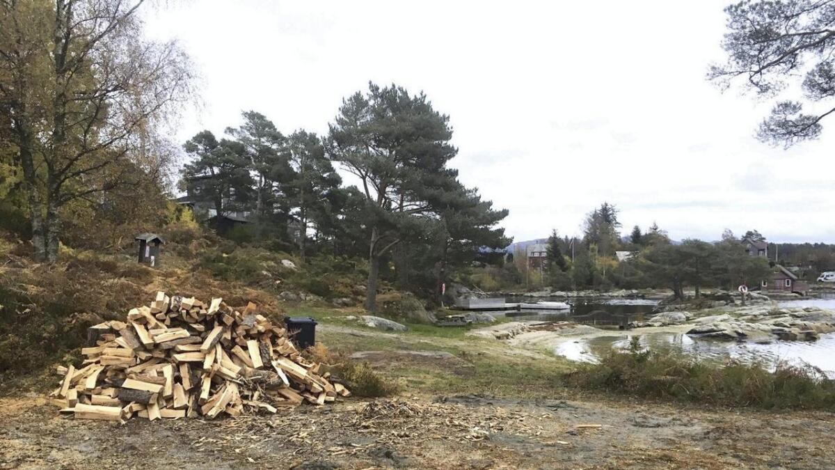 Furuneset har fått opna nye område for bruk etter hogsten, og på sandvolleyballbanen blir det kjekt å spela i sol i staden for skugge.