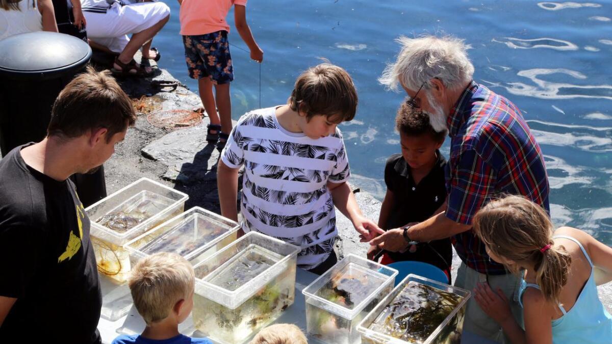 Noen av ungene fikk oppleve marinbiologen Gotfred Nilsen som veileder innimellom småkrabber, maneter og småsild.