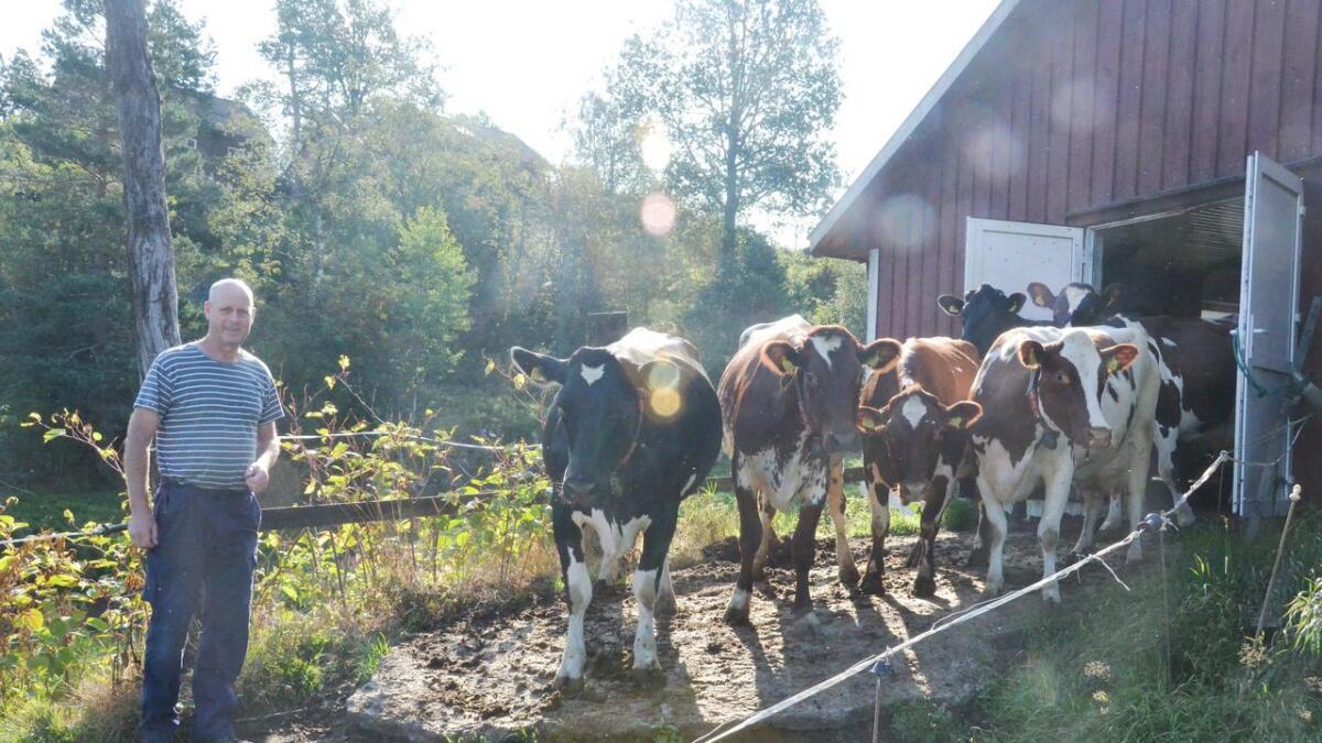 Klagesaken fra bonde Tor Kristian Ellingsberg skal opp til politisk behandling torsdag 22. august i Bygg- og miljøutvalget.