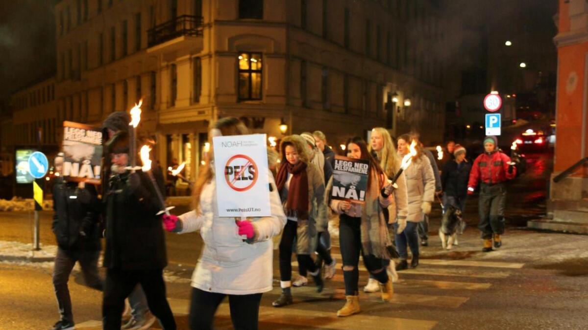 Rundt 120  personer gikk i fakkeltog mot pelsdyrnæringa.