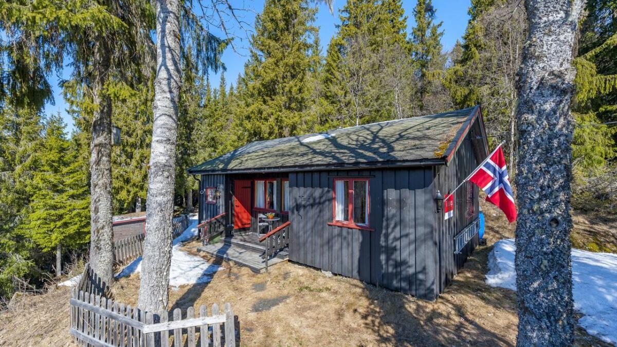 Denne hytta med adresse Høydalsmovegen 1487 D er på 38 kvadratmeter og har prisantydning 590.000 kroner.
