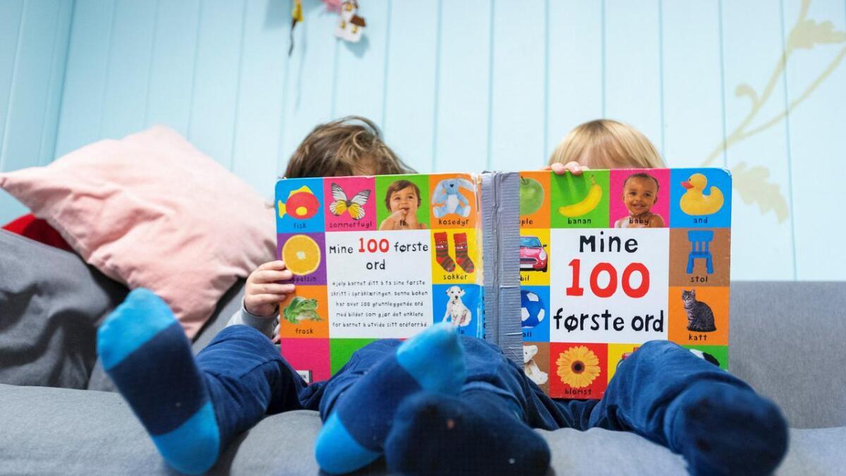Høyre vil ha mer sunn mat i barnehagene. Illustrasjons