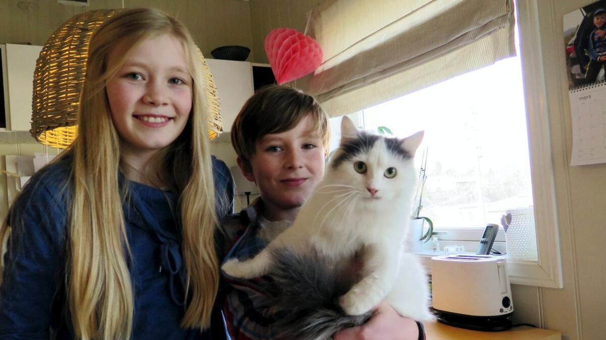 Marie (12) og Andreas (11) adopterte katten som før het Sandra. Nå heter den Melis og er godt fornøyd i sin nye familie på Vestre Nedenes i Arendal.