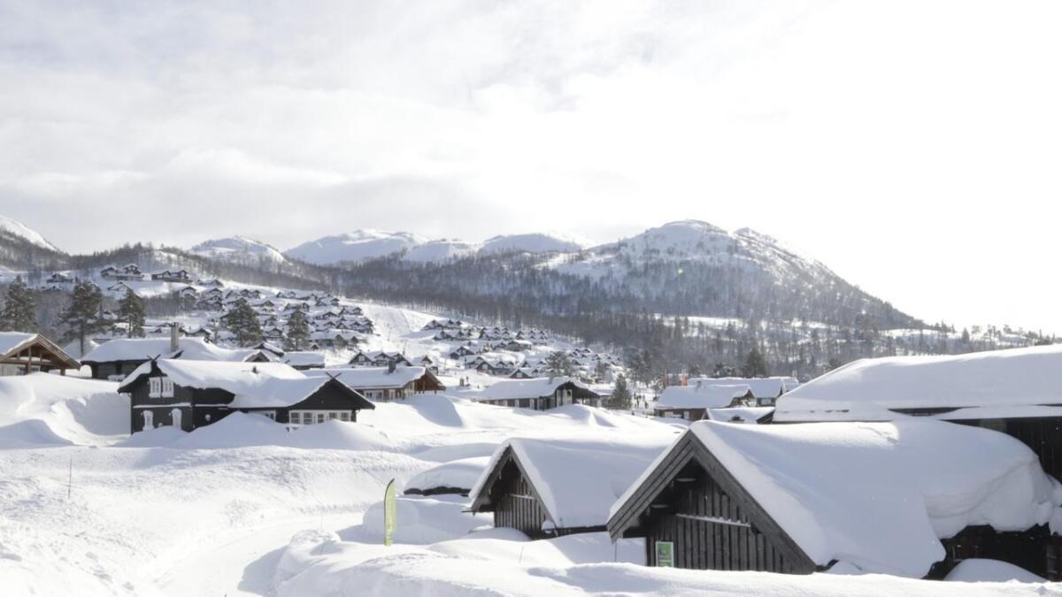 Holtardalen er et populært sted i Vinje å kjøpe hytte.