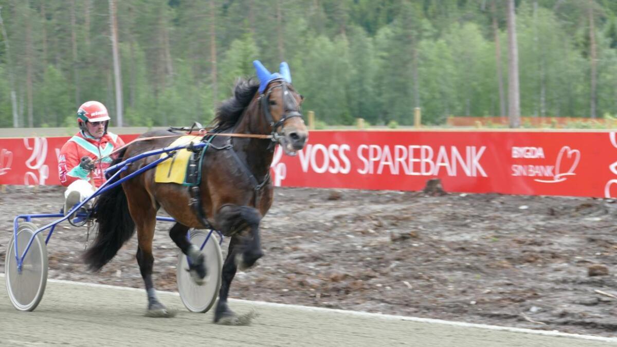 Sylv Odin tilhøyrande Magnar Nornes på Bulken, tok ein knallsiger i Bergen. Her under opninga av travbanen på Voss i juni.