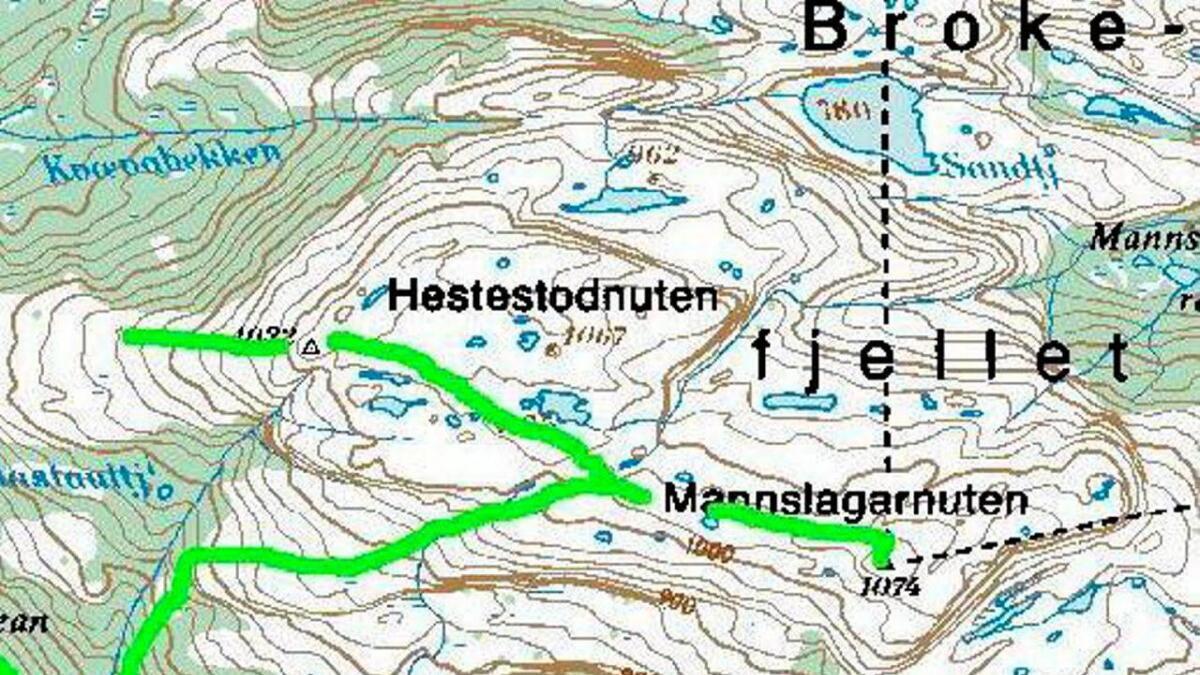 Det ble i natt igangsatt stor redningsaksjon etter en tenåringsjente som var på telttur ved Brokefjell.