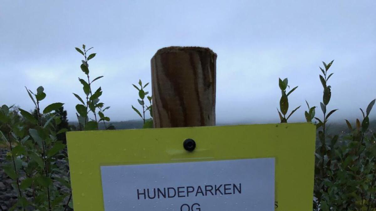 Dette skiltet møter deg om du går Veslefjorden rundt. «Hundeparken og Storisøyne er stengt inntil me veit meir om sjukdommen som har ramma fleire hundar på Austlandet».
