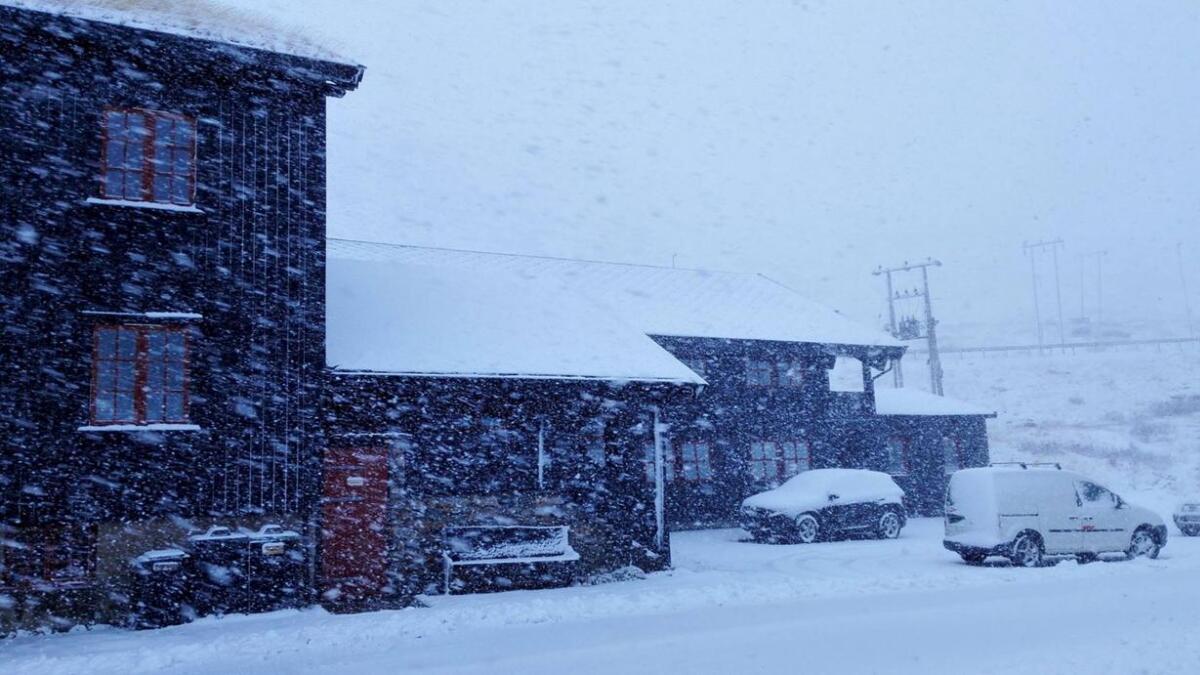Det snør sidelengs på Haukeliseter fredag.