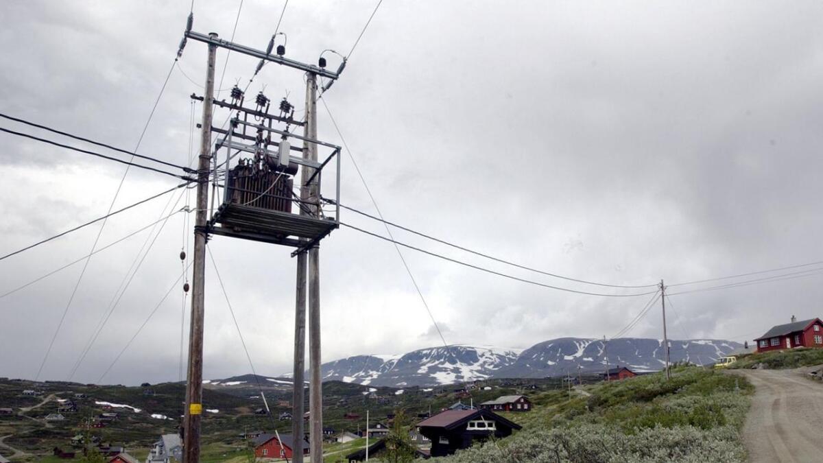 Innsenderen skriver at Telenor gjerne skulle vært raskere med å bygge ut fiber i Hallingdal, men at samarbeidet med lokale aktører byr på utfordringer.
