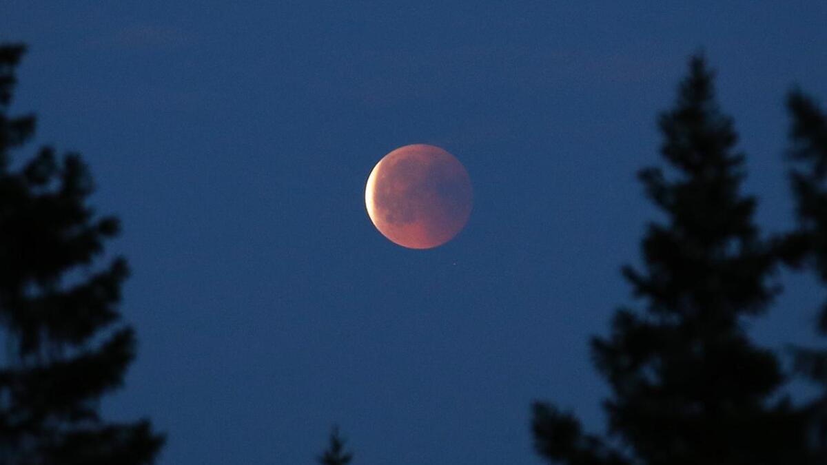 En delvis måneformørkelse vil kunne ses på himmelen over store deler av landet tirsdag kveld.