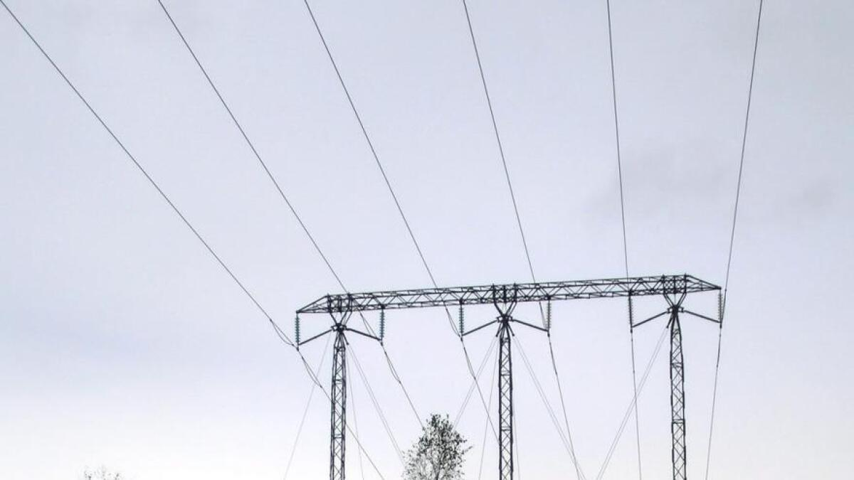 Kraftdirektør spår lave strømpriser de neste to årene