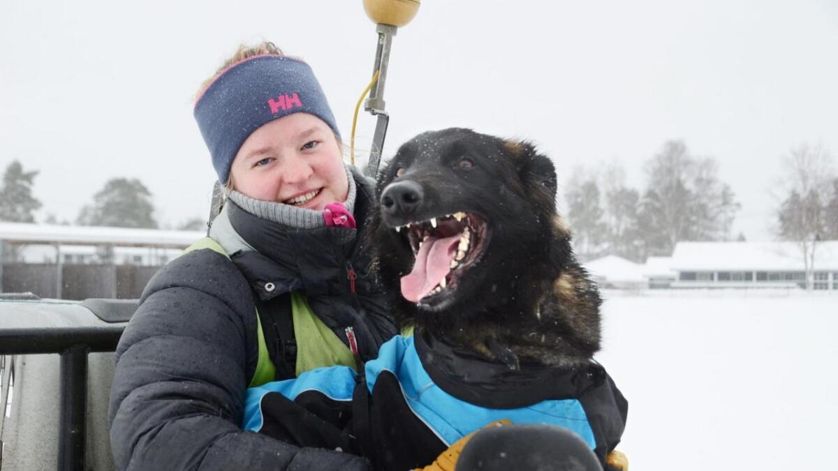 Hunden Caysie er eit heilt nødvendig verktøy for at Margit Kjernaas skal få gjort jobben sin.