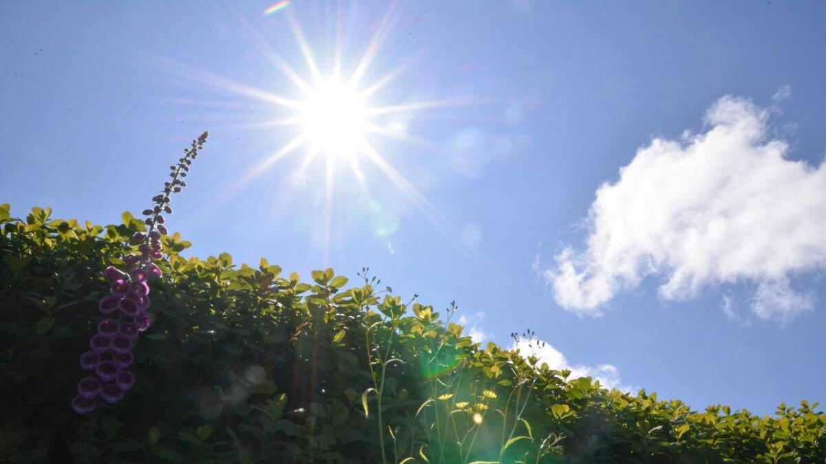 Denne veka er det venta sol, og ingen nedbør.