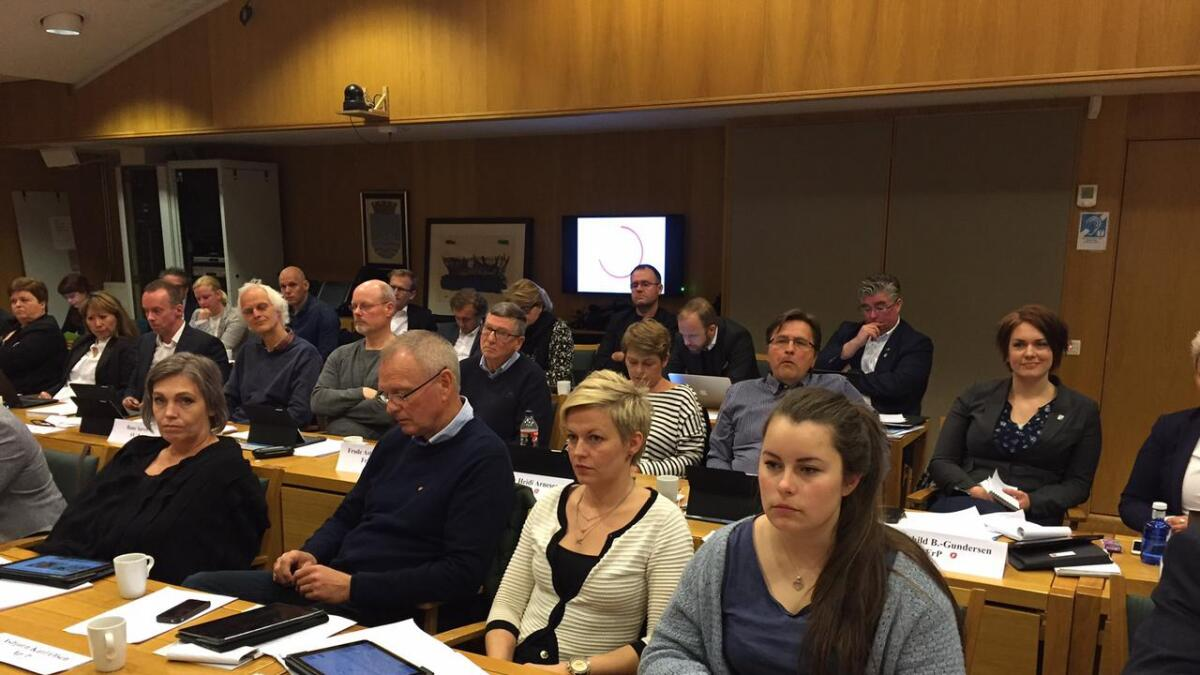 Gjennomsnittsalderen i Arendal bystyre går opp. Jelena Høegh-Omdal (Ap) var bystyrets yngste for fire år siden – nå, fire år senere, blir hun den yngste som 23-åring.
