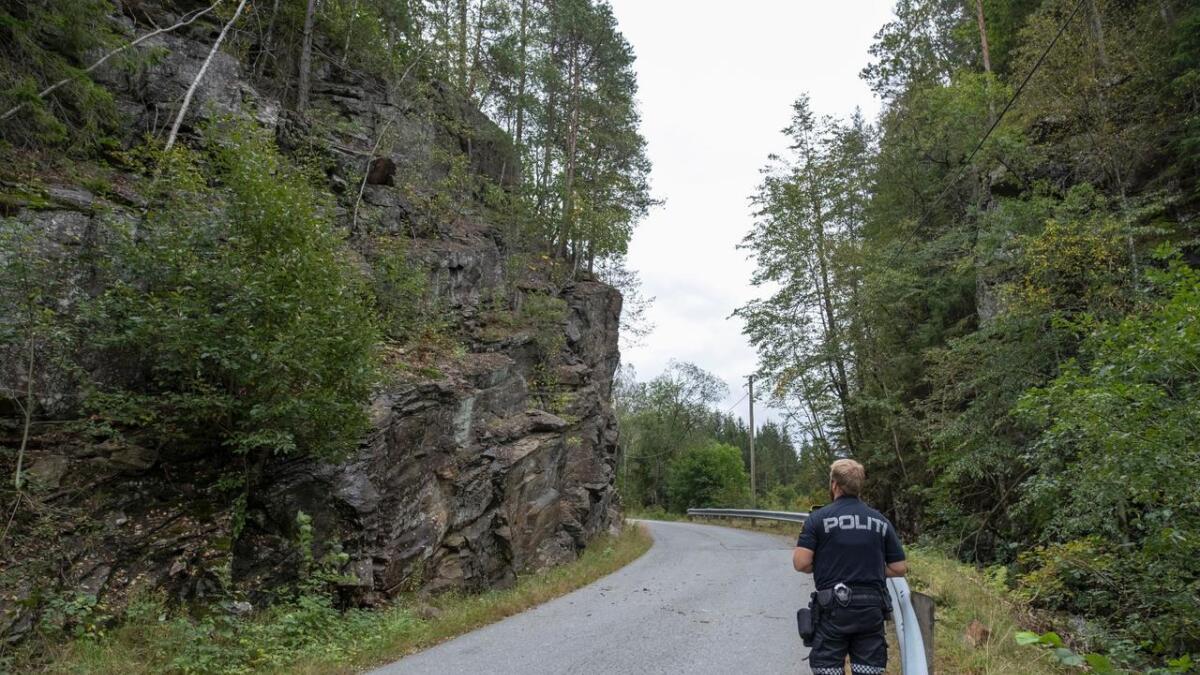 8-10 steiner skal ha rast over fylkesveien i Birkenes, og skadet én person.