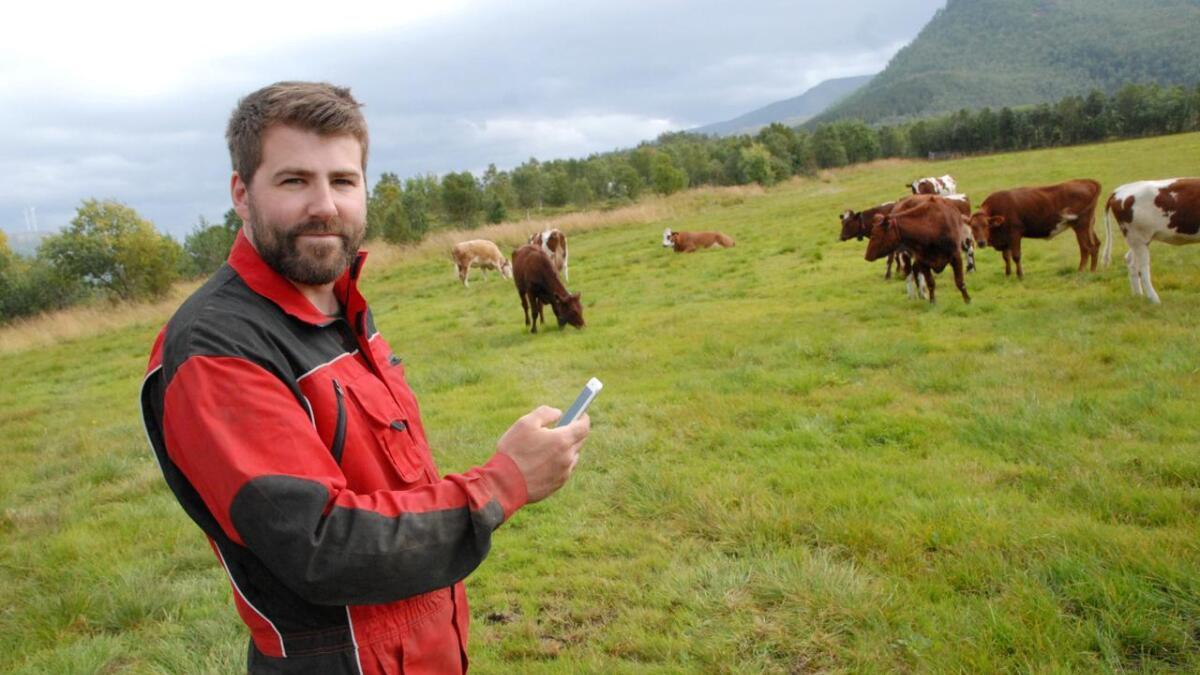 Eirik Wallstad i Holmstaddalen styrer beitet til kyrne via app på mobil.