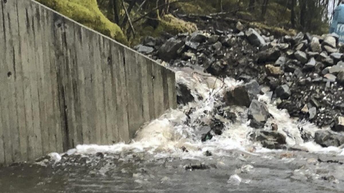 Mykje av vatnet kjem frå området oppom vegen til Brekkjen.