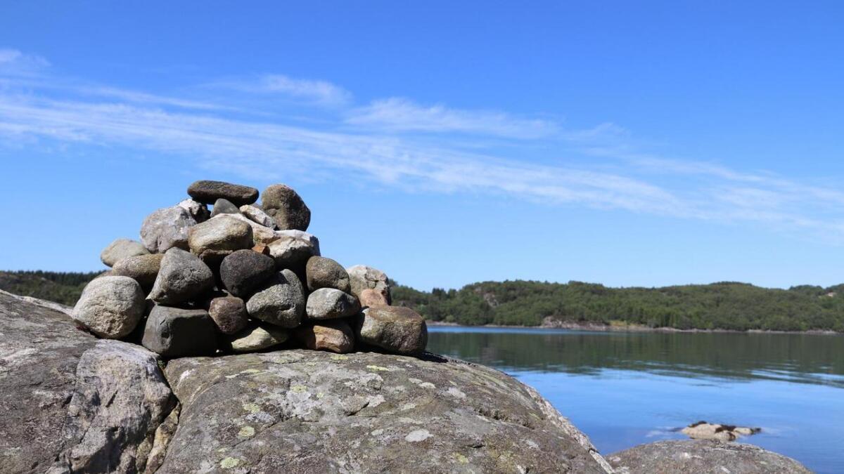 Terrenget på Rossneset skiftar frå sjø til skog.