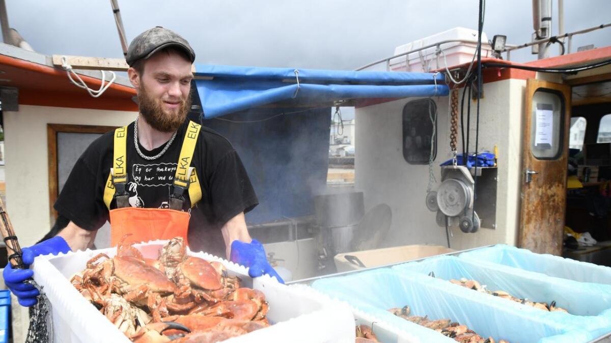Det damper av krabbene når Axel Bjørkås fisker dem opp fra kjelen og legger dem klare til kundene. Han mener de danske krabbene er bedre enn de norske.