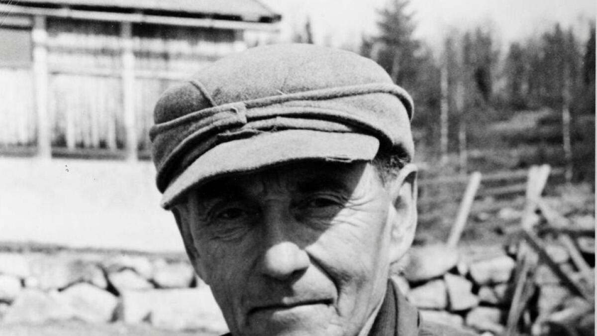 Henrik Brun kasta seg over saueavl etter krigen. Han likte seg i fjellet og dreiv som gjetar på Hardangervidda, samstundes som han registrerte fjellplanter. Biletet er frå 1952.